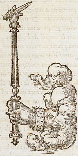 Gla >> French Emblems: Pictura of Paradin, Claude: Devises heroïques (1557): Non sine causa.